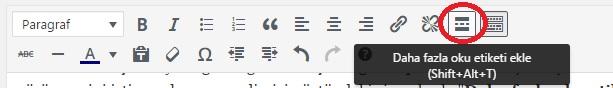 wordpress more tag,devamını oku,kaldırma